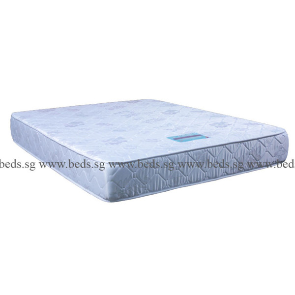 Dolphin 2in1 BackCare Mattress