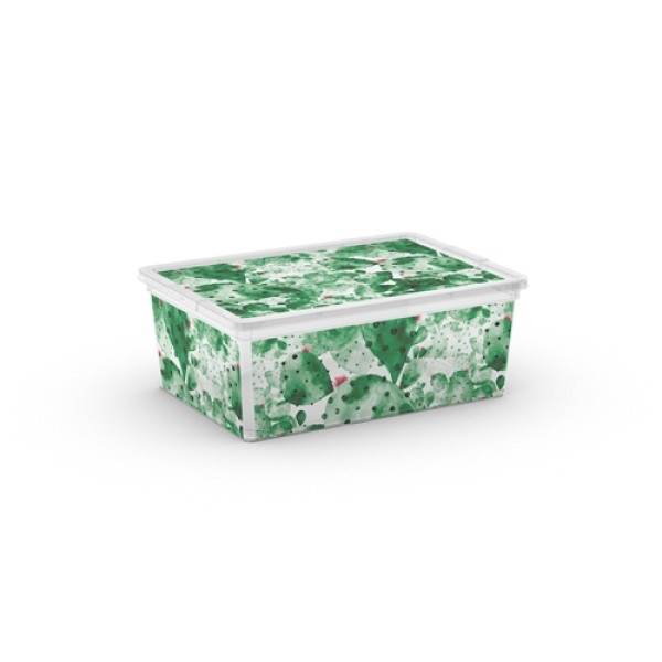 C Box Style Nature W/Lid S