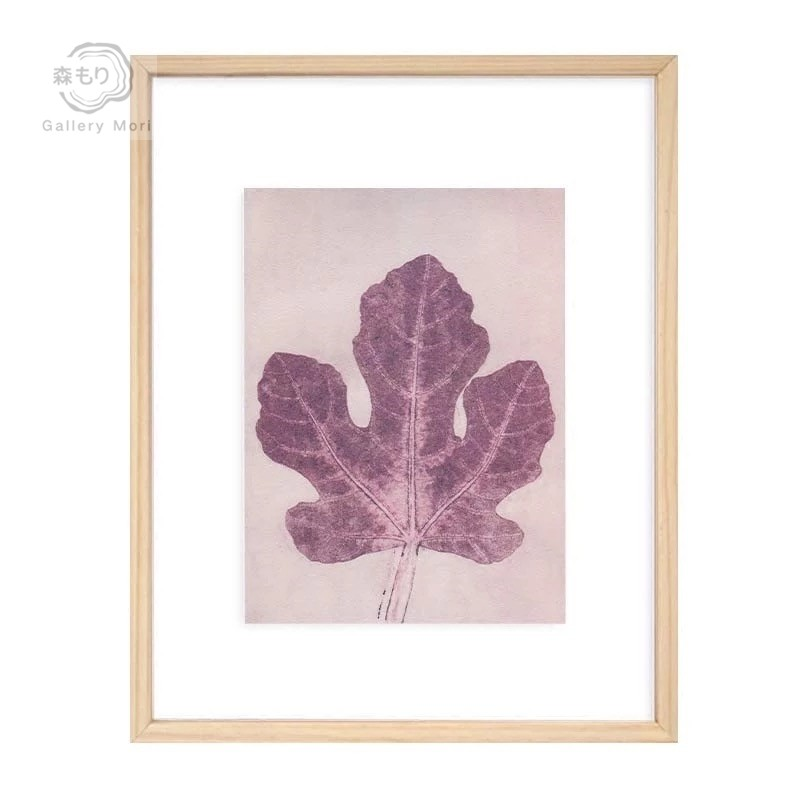 Gallery Mori  Transparent series (Illustration of Dried Plants). Display  Gallery Item 1 ... 24f137e844ee