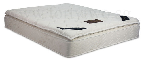 PrinceBed Nature Touch Plush Synthetic Latex Pillow Top Bamboo Stress Relief Soft Pocketed Spring Mattress