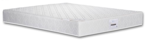 VIRO Backmaster Mattress in 6 Inch
