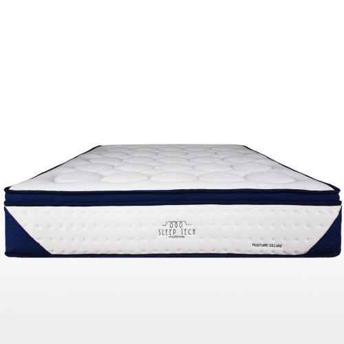 Posture Deluxe Pocketed Spring Queen Size Mattress by ...